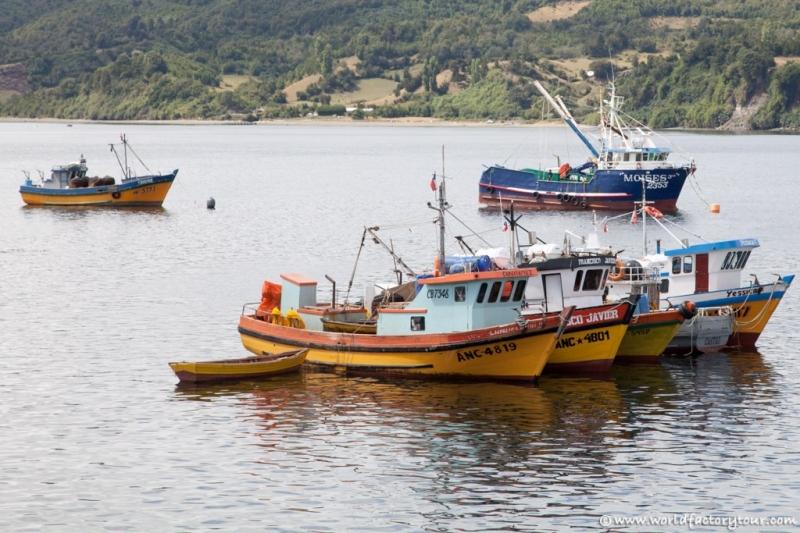 voyage-chili-ile-de-chiloe-58