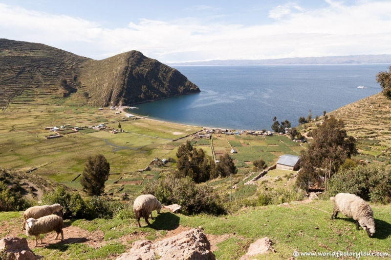 voyage-bolivie-lac-titicaca-isla-sol-luna-36
