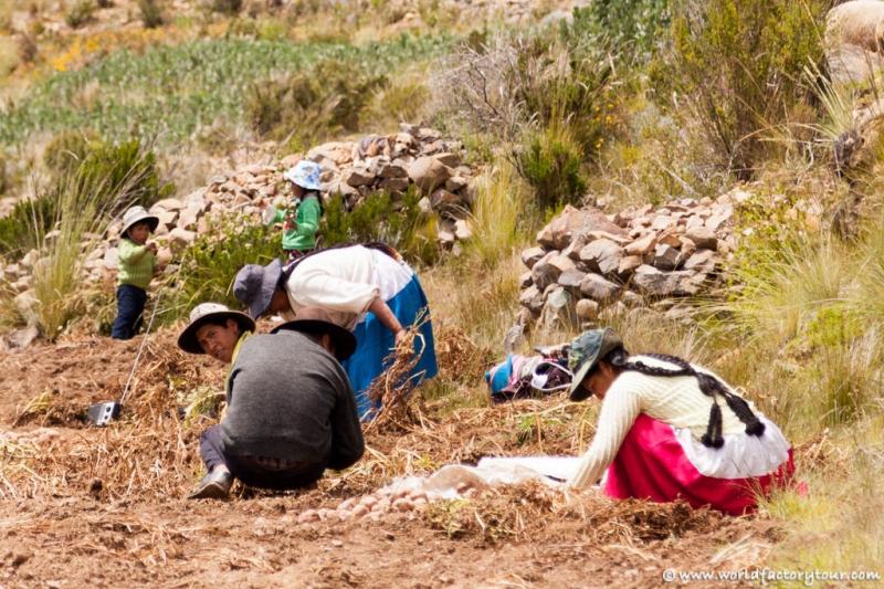 voyage-bolivie-lac-titicaca-isla-sol-luna-07