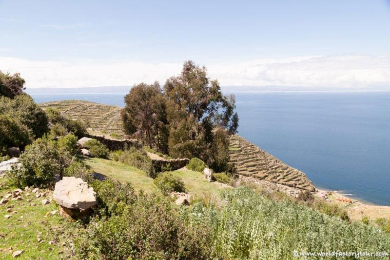 voyage-bolivie-lac-titicaca-isla-sol-luna-24