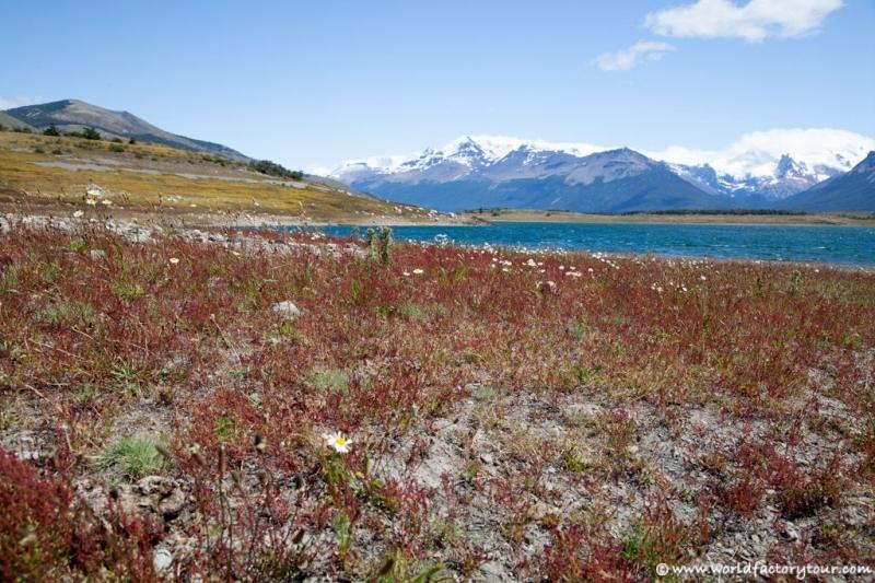 voyage-argentine-el-calafate-lago-roca-cerro-del-cristal-patagonie-010