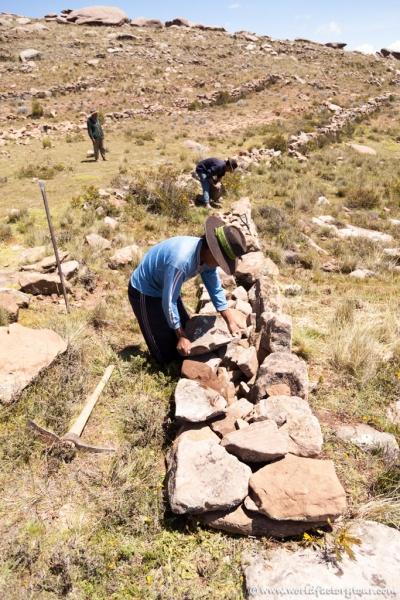voyage-perou-lac-titicaca-agro-tourisme-rural-paramis-7