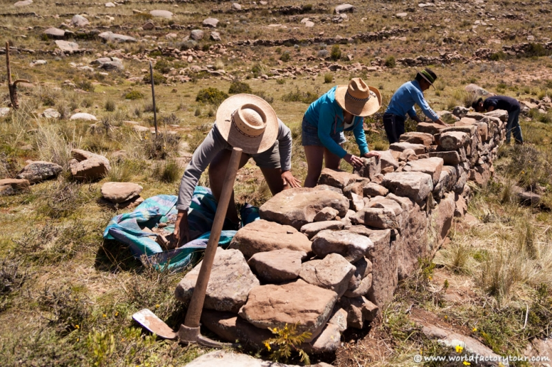 voyage-perou-lac-titicaca-agro-tourisme-rural-paramis-9