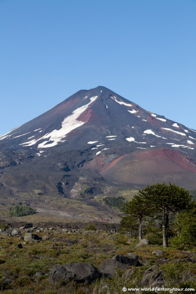 voyage-chili-region-lacs-parc-national-conguillio-3