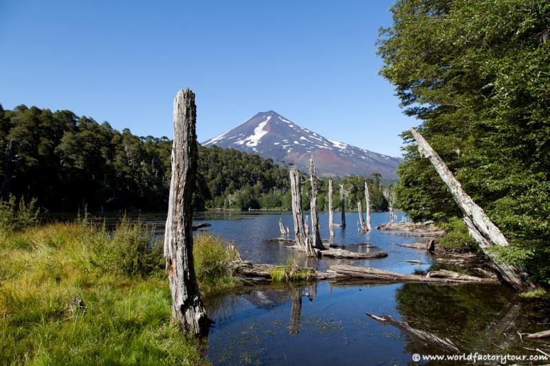 voyage-chili-region-lacs-parc-national-conguillio-9