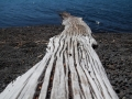 voyage-chili-region-lacs-parc-vicente-perez-rosales-13