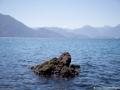 voyage-chili-region-lacs-parc-vicente-perez-rosales-14