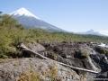 voyage-chili-region-lacs-parc-vicente-perez-rosales-6