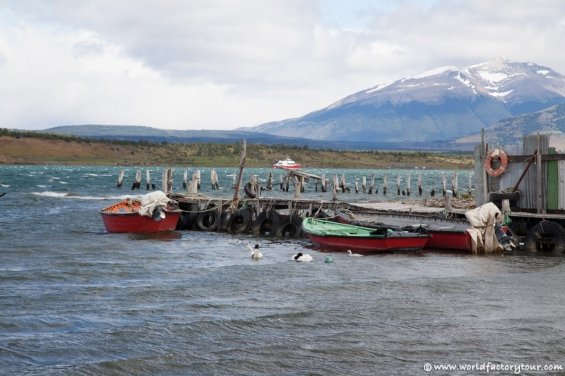 voyage-chili-puerto-natales-103