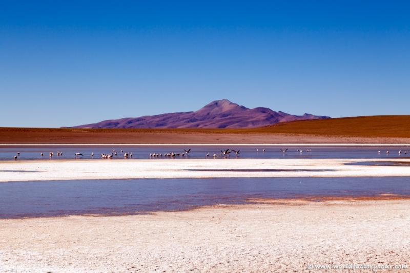 voyage-bolivie-salar-uyuni-depart-tupiza-24