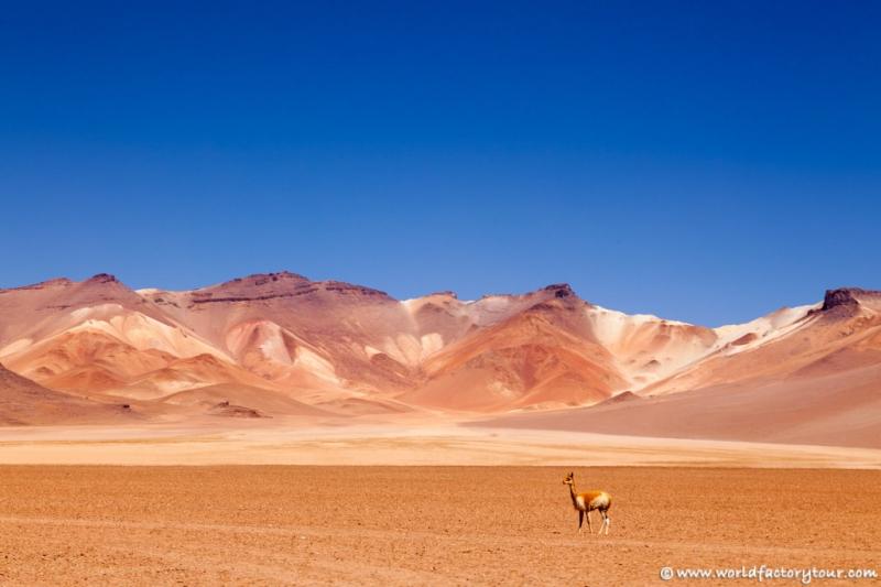 voyage-bolivie-salar-uyuni-depart-tupiza-37
