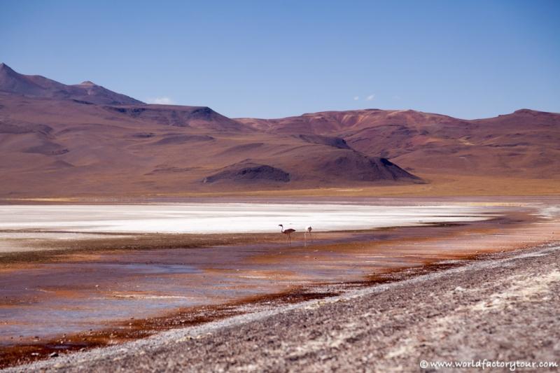 voyage-bolivie-salar-uyuni-depart-tupiza-52