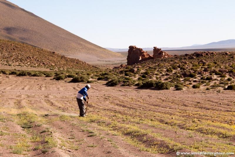 voyage-bolivie-salar-uyuni-depart-tupiza-61
