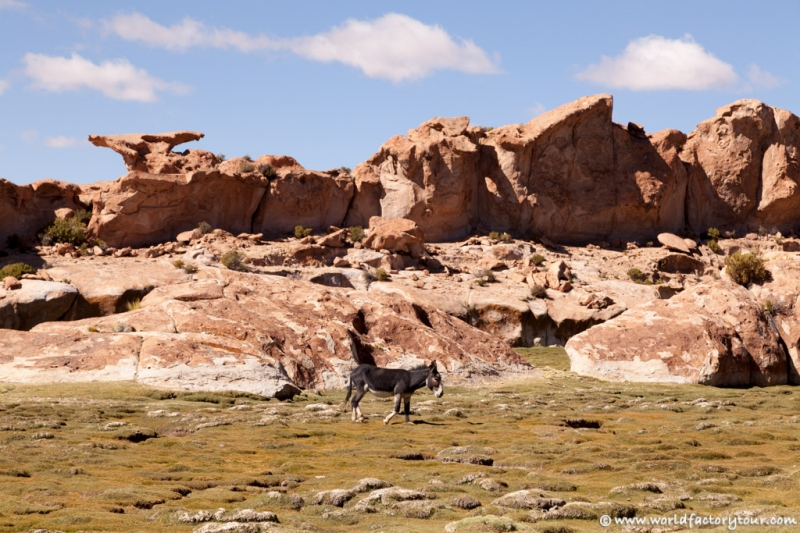 voyage-bolivie-salar-uyuni-depart-tupiza-75
