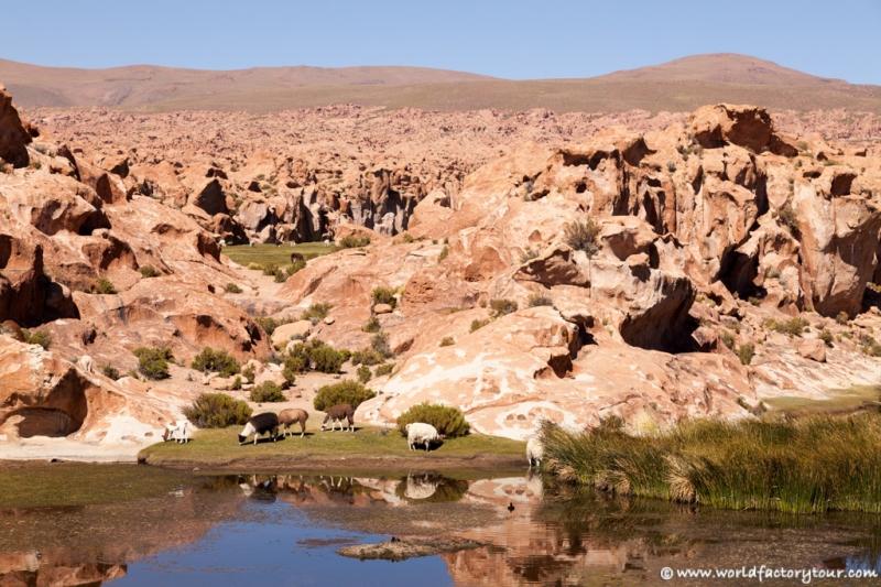 voyage-bolivie-salar-uyuni-depart-tupiza-80