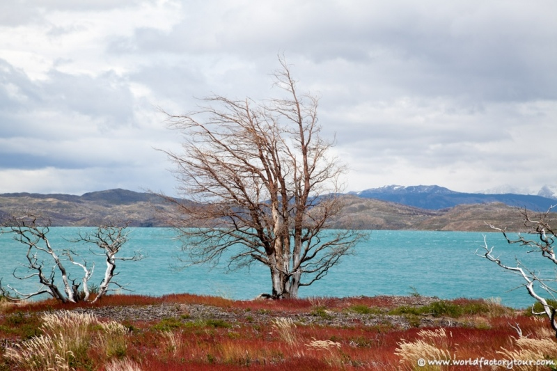 voyage-chili-parc-national-torres-del-paine-2