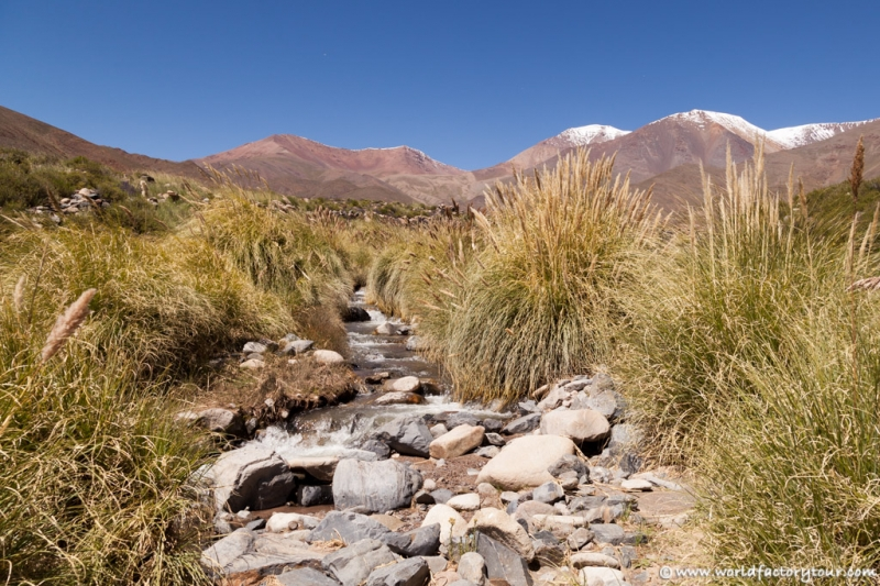 voyage-argentine-salta-tren-de-las-nubes-41