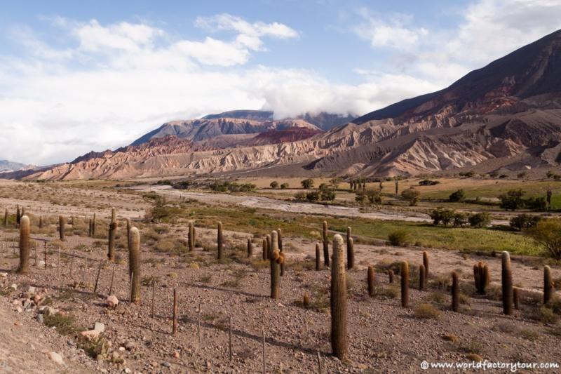 voyage-argentine-salta-tren-de-las-nubes-73